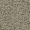 Coronet Enchantress Talon Textured Indoor Carpet
