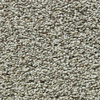 Coronet Enchantress Owlet Textured Indoor Carpet