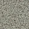 Coronet Enchantress Snow Owl Textured Indoor Carpet
