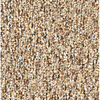 Coronet Stock Carpet Almond Berber Indoor/Outdoor Carpet