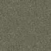 Coronet Stock Carpet Gray Berber Indoor/Outdoor Carpet