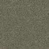 Coronet Stock Carpet Gray Berber Indoor/Outdoor Carpet