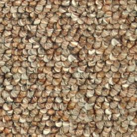 Shop Coronet Stock Carpet Cinnamon Berber Indoor At