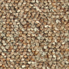Coronet Stock Carpet Cinnamon Berber Indoor Carpet