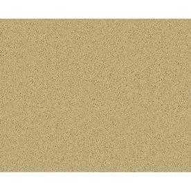 STAINMASTER Active Family Euphoria Legend Textured Indoor Carpet