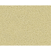 STAINMASTER Active Family Densmore Kino Frieze Indoor Carpet