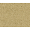 STAINMASTER Active Family Densmore Mojave Frieze Indoor Carpet