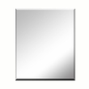 Style Selections 20-in x 24-in Silver Beveled Rectangle Frameless Traditional Wall Mirror
