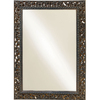 Style Selections 26.5-in x 36.25-in Rustic Iron Rectangle Framed Wall Mirror