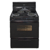Premier Freestanding 3.9-cu ft Electric Range (Black) (Common: 30-in; Actual: 30-in)