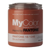 MyColor inspired by PANTONE 35 fl oz Interior Eggshell Bruschetta Paint and Primer in One