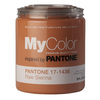 MyColor inspired by PANTONE 35 fl oz Interior Eggshell Raw Sienna Paint and Primer in One