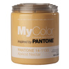 MyColor inspired by PANTONE 35 fl oz Interior Eggshell Apricot Nectar Paint and Primer in One