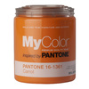 MyColor inspired by PANTONE 35 fl oz Interior Eggshell Carrot Paint and Primer in One
