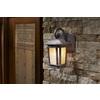 Portfolio Corrigan 10.87-in H Dark Brass Outdoor Wall Light