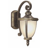 Portfolio Cabaray 17-5/8-in Dark Brass Outdoor Wall Light