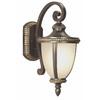 Portfolio Cabaray 17.62-in H Dark Brass Outdoor Wall Light