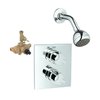 GROHE Allure Starlight Chrome 2-Handle Shower Faucet with Single-Function Showerhead