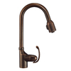 Danze Anu Tumbled Bronze 1-Handle Pull-Down Kitchen Faucet
