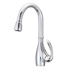 Danze Bellefleur Chrome 1-Handle Pull-Down Kitchen Faucet