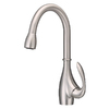 Danze Bellefleur Stainless Steel 1-Handle Pull-Down Kitchen Faucet