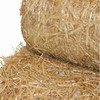 Hanes Geo Components TerraGuard 8-ft x 113-ft Straw Biodegradable Double-Net Erosion Blanket