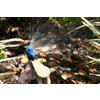 Mister Landscaper 12-Pack Quarter-Circle-Spray Drip Irrigation Micro Sprays