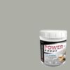 TEC 5-lb Standard Gray Sanded Powder Grout