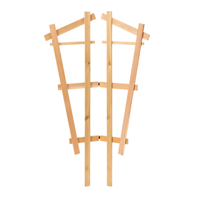 Garden Treasures 29-in W x 48-in H Natural Fan Garden Trellis