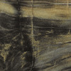 Formica Brand Laminate 12-in W x 12-in L Petrified Wood Laminate Countertop Sample