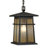 Portfolio Amberset 14.25-in Specialty Bronze Outdoor Pendant Light