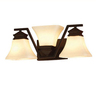 allen + roth 3-Light Oil-Rubbed Bronze Bathroom Vanity Light