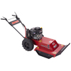 Swisher 344-cc 24-in Self-Propelled Rear Wheel Drive Front Discharge Gas Push Lawn Mower with Briggs & Stratton Engine