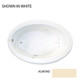 jacuzzi gallery almond acrylic oval whirlpool tub common 43 in x 62