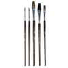Project Source 5-Pack Natural Bristle Thin Angle Sash Paint Brush Variety Pack