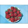  1.39 Pint Strawberry (L00574)