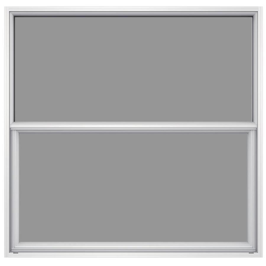 Single Pane Single Hung Window : Shop jeld wen premium atlantic aluminum series