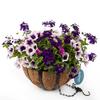 Hampton Kir Royal Black Wrought Iron Hanging Basket Kit