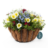 Classic Water Colours Gloss White Hanging Basket Kit