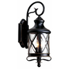 allen + roth 20.5-in H Oil Rubbed Bronze Outdoor Wall Light