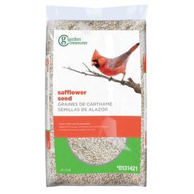 Garden Treasures 6-lb Bird Seed Bag (Safflower)