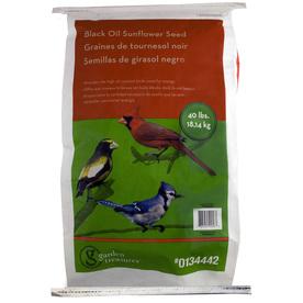 Garden Treasures 40-lb Bird Seed Bag (Black Oil Sunflower)
