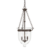 Kichler Lighting Belleville 15.51-in W Pendant Light with Clear Glass Shade