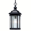 Portfolio Kirkwood 18-in Black Outdoor Pendant Light