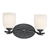 Portfolio 2-Light Distressed Black Bathroom Vanity Light