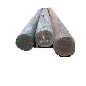 Pressure Treated Dimensional Lumber