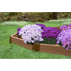 Frame It All 2-in W x L x 5.5-in H Brown Composite Raised Garden Bed