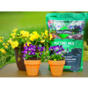 Sta-Green 10-Quart Potting Soil