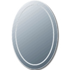 Style Selections 20-in x 30-in Polished Edge Mirror