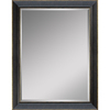 Style Selections 24-in x 30-in Distressed Black Rectangle Framed Wall Mirror